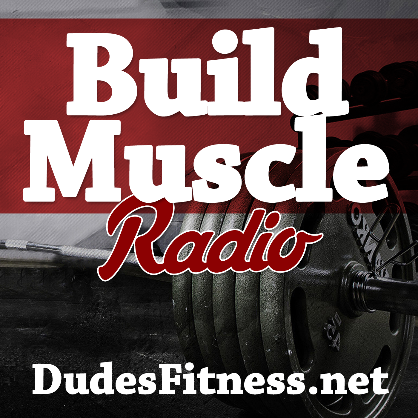 Build Muscle Radio: Fat Loss | Muscle Buildling | Fitness Tips | Workout Routines